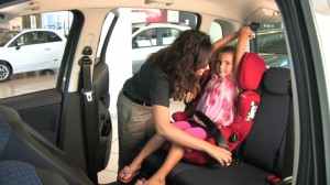SICUREZZA IN AUTOMOBILE - I MURRI MURR