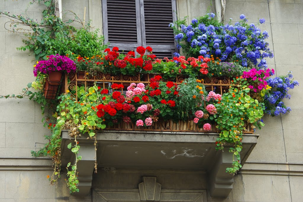 Pillole di gusto consigli di stile anche a casa terrazze for Tutto per terrazzo