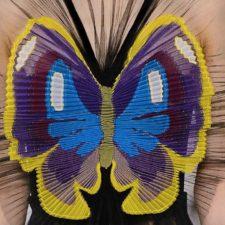 Trend A/I 2016-17 – Farfalle d'inverno
